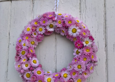 Wreath of pink acrolininium dried flowers